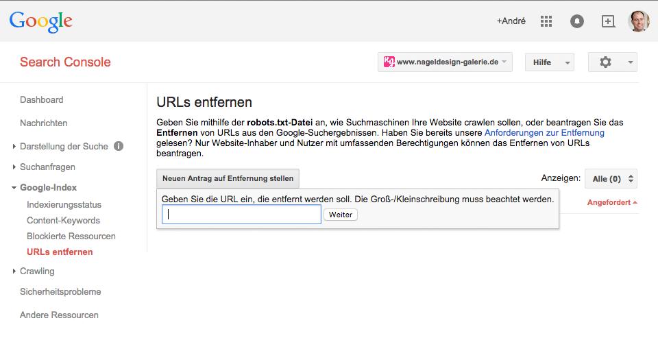 URL wurde in der Search Console entfernt